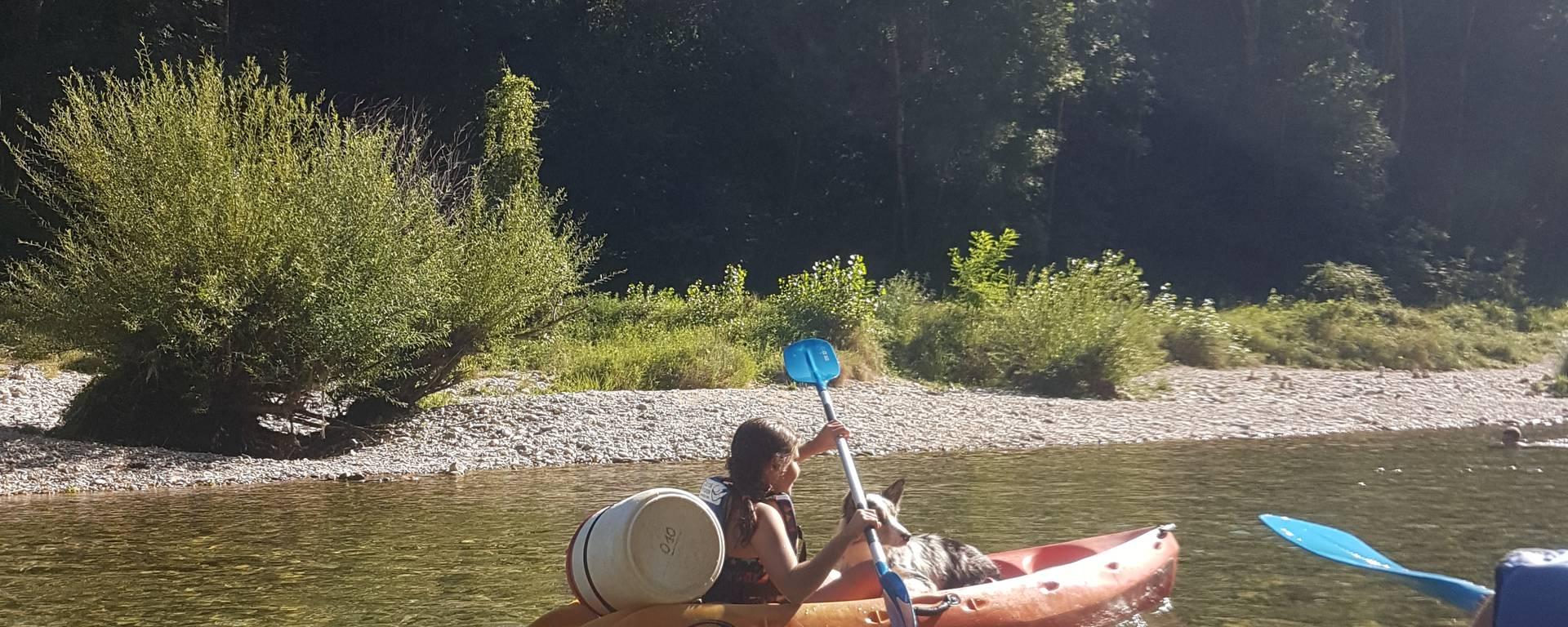 Faire du canoë avec son chien, c'est possible !