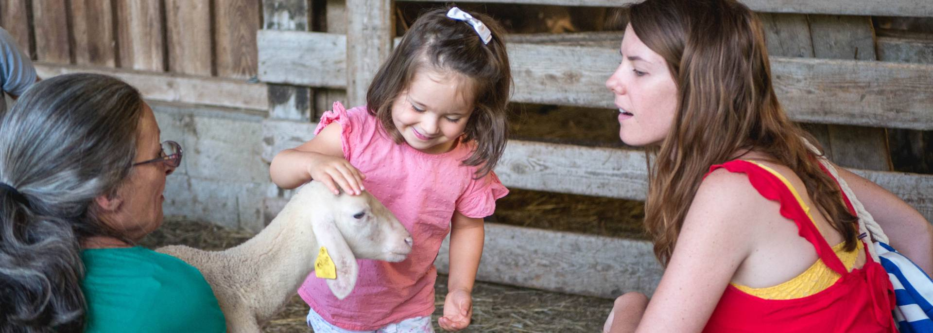 Visite de ferme en famille