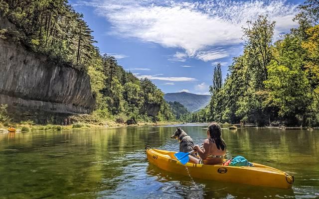 Canoë dans les Gorges du Tarn avec son chien