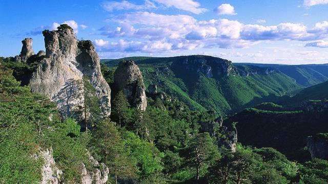 Journée groupes entre Gorges du Tarn, Gorges de la Jonte et Causses