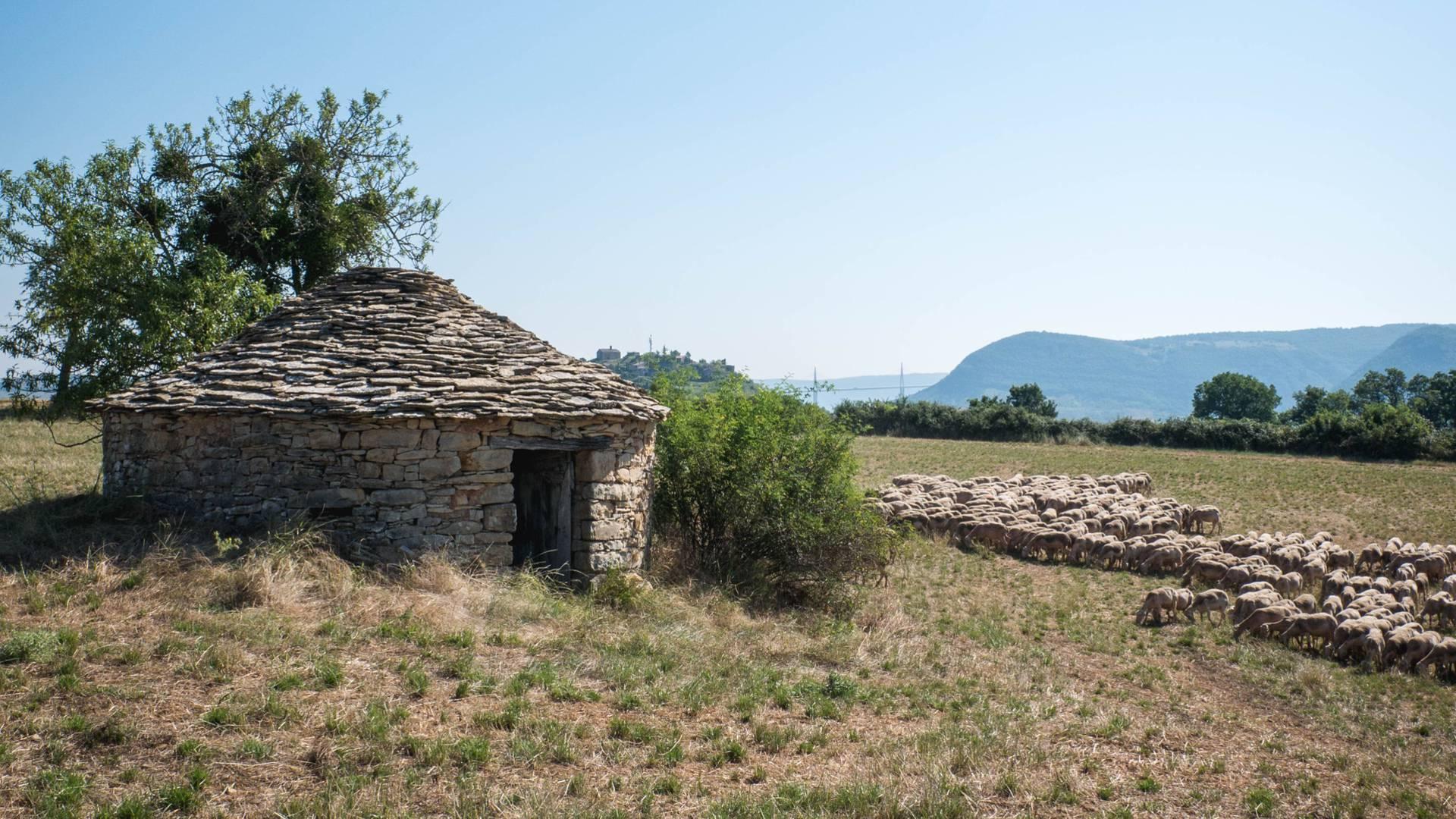 Caselle de Luzençon