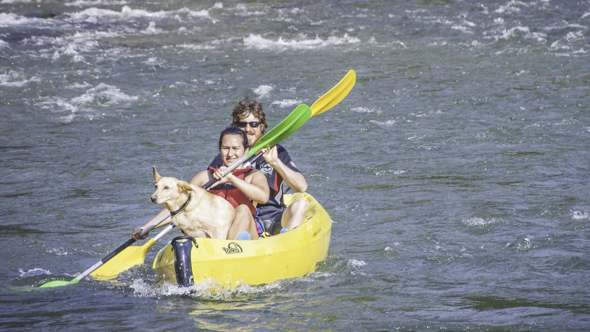 Emmene ton chien sur le Tarn en canoë©StyleMillau