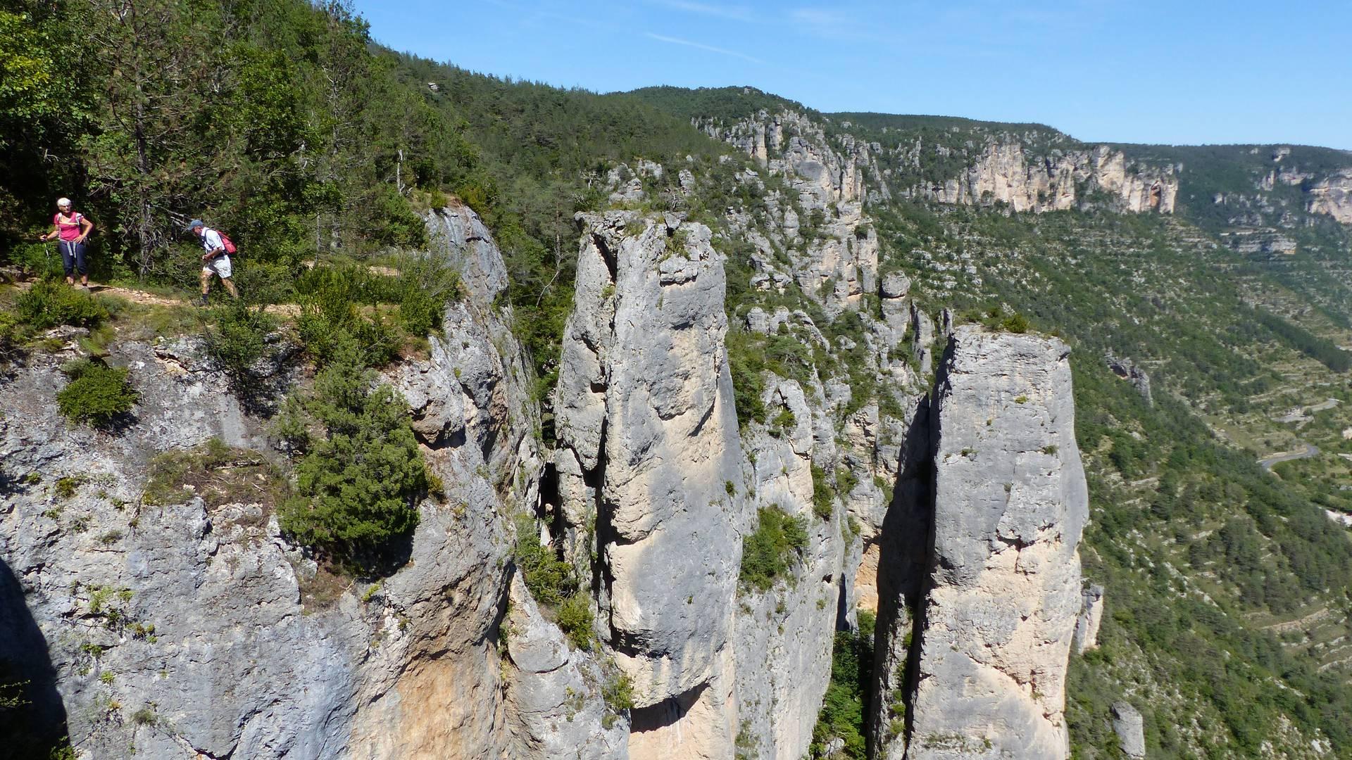 Vue sur les Gorges du Tarn et de la Jonte