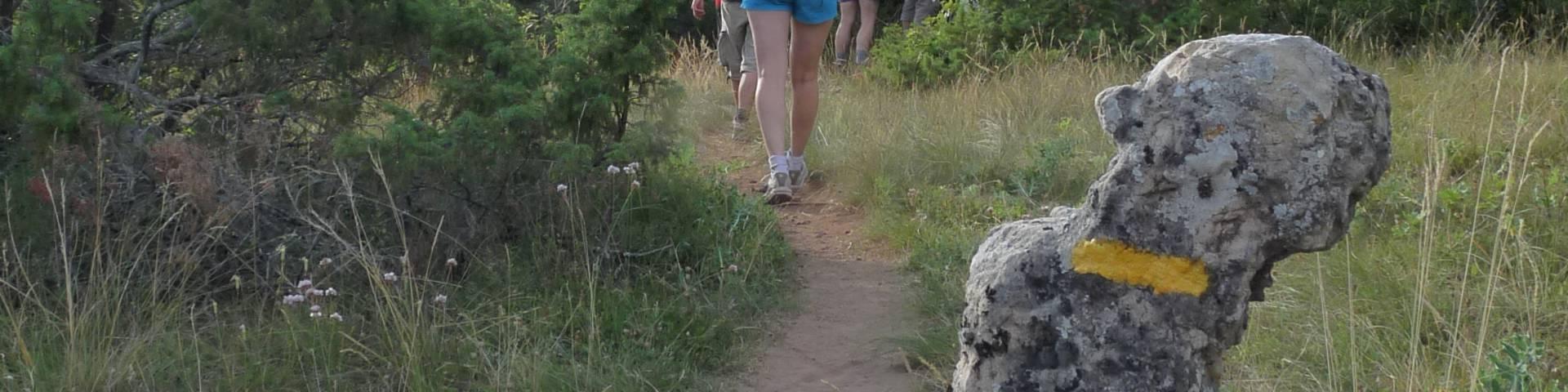 Randonnée pédestre autour de Millau