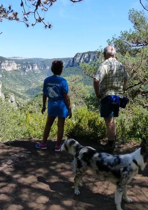 Découverte des Gorges du Tarn en randonnée