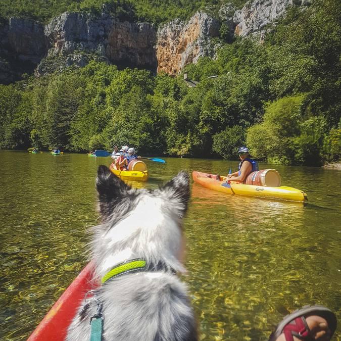 Cani-canoe dans les Gorges du Tarn