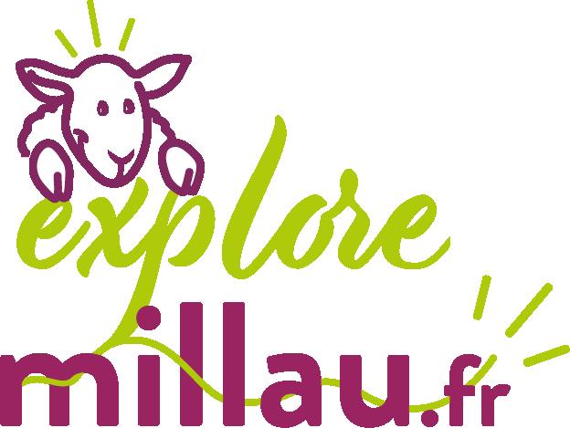 Logo Millau Style